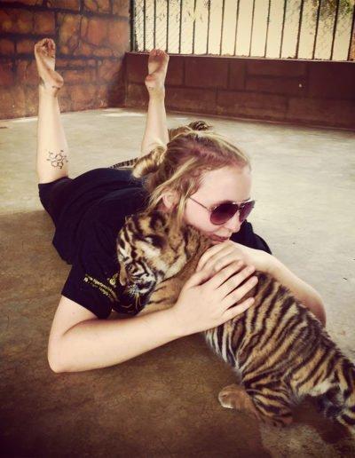 Tiger Cuddles